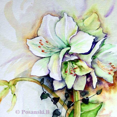Aquarellmalerei, Amaryllis, Blumen, Aquarell