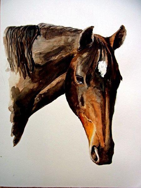 Pferde, Aquarell