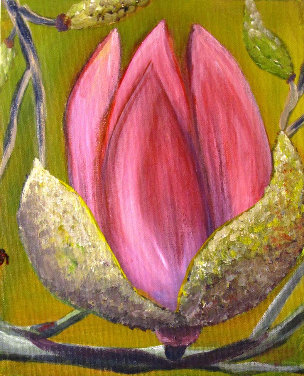 bild magnolien blumen baum strauch von elvipe bei kunstnet. Black Bedroom Furniture Sets. Home Design Ideas
