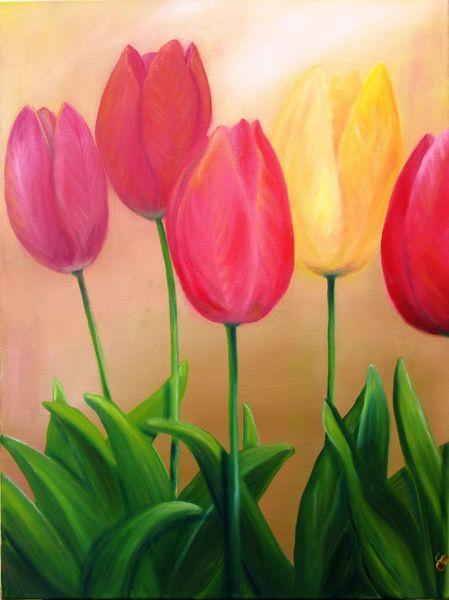 Tulpen, Blumen, Blüte, Garten, Frühling, Mai