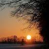 Baum, Winter, Wald, Sonne