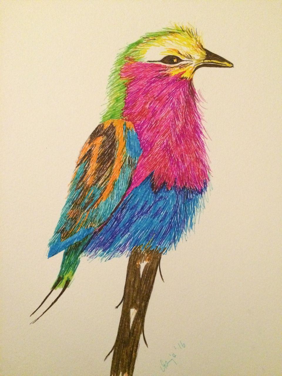 Großartig Färbung In Bildern Von Vögeln Ideen - Malvorlagen Ideen ...