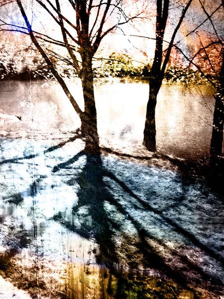 Feldmochinger see, See, Textur, Baum, Licht, Meer