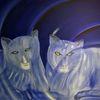 Tiere, Kalt, Tierportrait, Katze