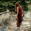 See, Wasserlilien, Hyperrealismus, Spiegelung