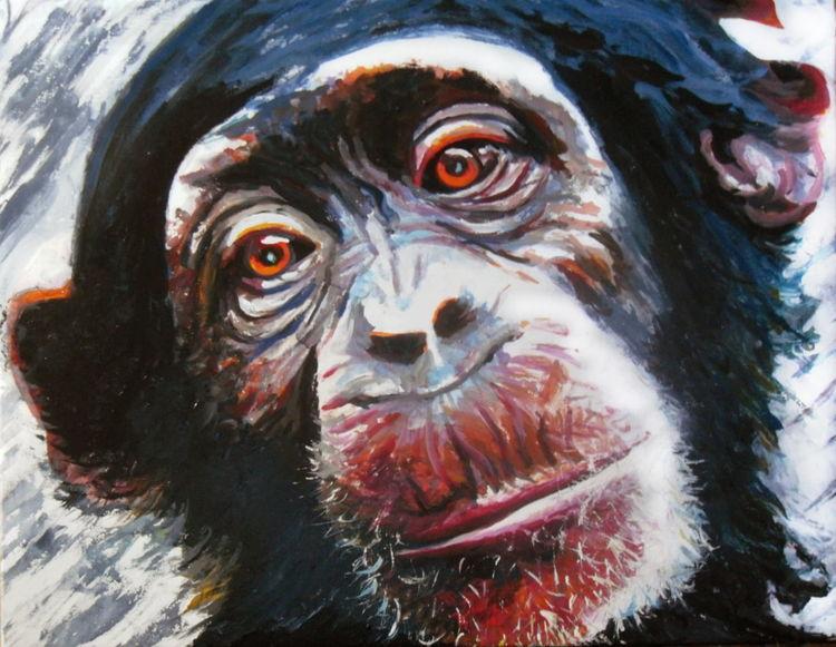 Portrait, Ausdruck, Schimpanse, Augen, Tiere, Affe
