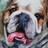 Tiere, Mops, Aquarellmalerei, Hund