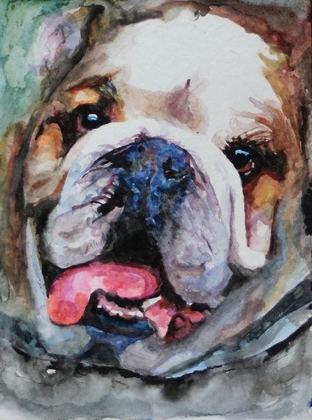 Mops, Aquarellmalerei, Hund, Portrait, Tiere, Aquarell