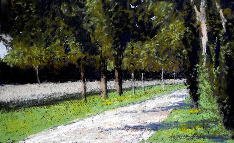Baum, Feld, Licht, Weg, Malerei