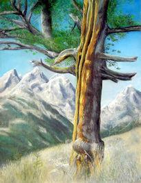 Pastellmalerei, Zeichnung, Baum, Landschaft