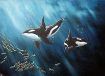 Schwertwal, Fischschwarm, Unterwasser, Malerei