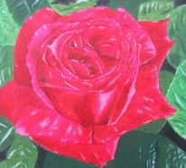 Malerei, Stillleben, Rose, Rot
