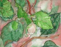 Herbst, Aquarellmalerei, Mecklenburg, Malerei