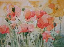 Mecklenburg, Aquarellmalerei, Blumen, Mohn