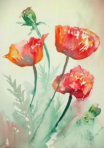 Blumen, Rot, Malerei, Mohn