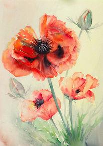 Blumen, Malerei, Mohn, Rot