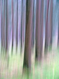 Lightpainting, Wald, Verwischen, Wischeffekt