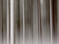 Lichtmalerei, Wischeffekt, Fotografie, Abstrakt