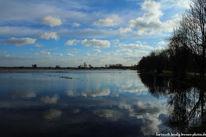 Landschaft, Spiegelung, Bremen, Borgfeld