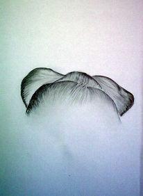 Skizze, Zeichnung, Zeichnungen,