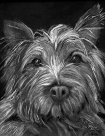 Malerei, Ölmalerei, Hund, Tiere