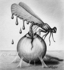 Surreal, Libelle, Psyche, Skizzenbuch