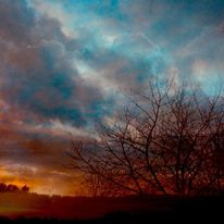 Himmel, Wolken, Busch, Fotografie