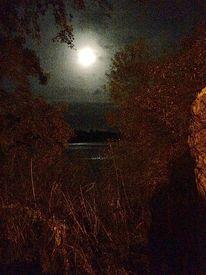 Mond, Gesträuch, See, Fotografie