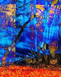 Birkenstämme blau, Durchscheinende welten, Rot, Digitale kunst