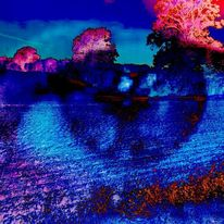 Augen, Baum, Wasserfeld, Digitale kunst