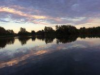 Himmel, Spiegelung, Wasser, Baum
