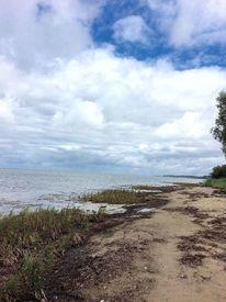 Strand, Wolken, Gras, Fotografie