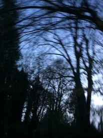Ins gestern gedreht, Verschlungene lichter, Verrauschte töne, Fotografie