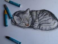 Zeichnung, Zeichnungen, Letzter,