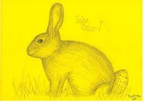 Ei, Zeichnung, Hase, Gelb