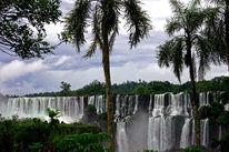 Wasserfall, Regenwald, Landschaft, Fotografie