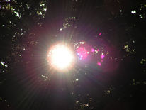Landschaft, Sonne, Fotografie, Rosa