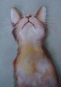 Figural, Katze, Portrait, Tiere