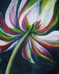 Blüte, Blumen, Abstrakt, Tulpen