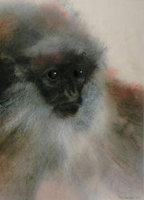 Tiere, Zoo, Affe, Zeichnung