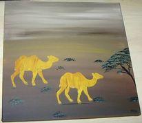 Wüste, Malerei, Kamel, Tour