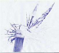 Bambus, Natur, Zeichnung, Zeichnungen