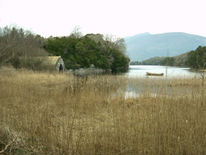 Landschaft, Muckross, Bootshaus, Fotografie