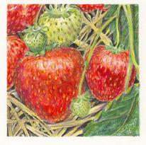Malerei, Früchte, Stillleben, Rot