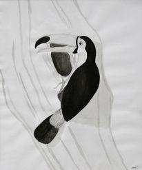 Tukan, Tiere, Vogel, Tusche