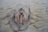 Haare, Malerei, Hund, Figural