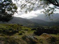 Landschaft, Fotografie, Irland