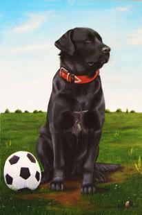 Hund, Ölmalerei, Labrador, Malerei