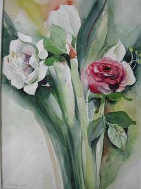Stillleben, Malerei, Rose, Amaryllis