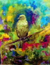 Vogel, Grünfink, Farbrausch, Ölmalerei